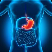 Лечение гастрита: симптомы, диета, эффективные способы
