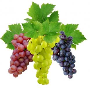 Виноград при язве желудка