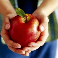 Яблоки при гастрите — можно или нельзя