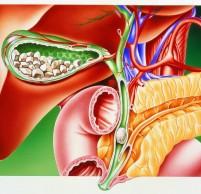 Заброс желчи в желудок – причины и лечение