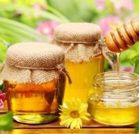 Мед для желудка и кишечника – польза и лечение