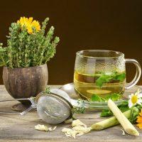 Народные средства при гастрите желудка: эффективные и безопасные рецепты
