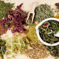 Причины и симптомы гастрита — лечение народными средствами