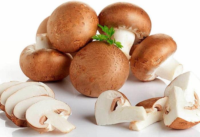грибы при гастрите