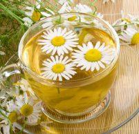 Лекарственные травы при болях в желудке: рецепты, советы