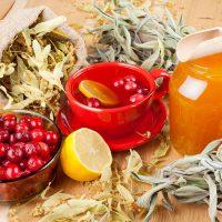 Лечение желудка и кишечника традиционными и народными средствами