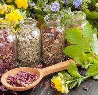 Чем лечить изжогу и гастрит: препараты, народные рецепты