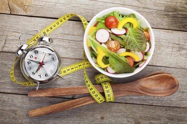 переваривание пищи в желудке