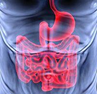 Эритематозный гастродуоденит: причины, симптомы и лечение