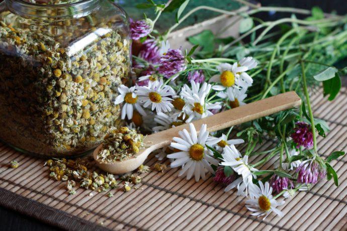 лечение травами при отравлении