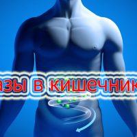 Причины газов в кишечнике