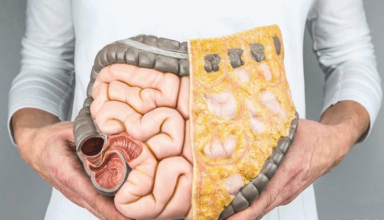 Лечение и диета при гастрите 13
