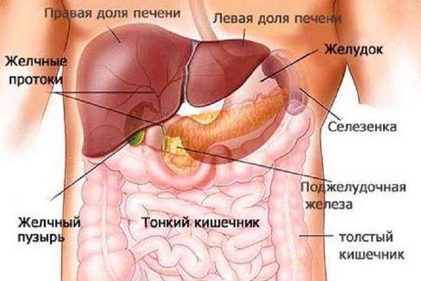 патологические процессы