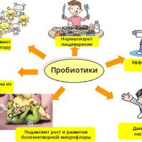 Бифидобактерии для детей