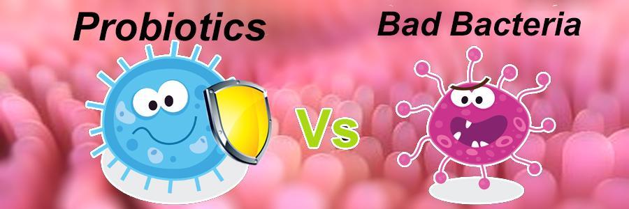 Лекарство с пробиотиками и пребиотиками