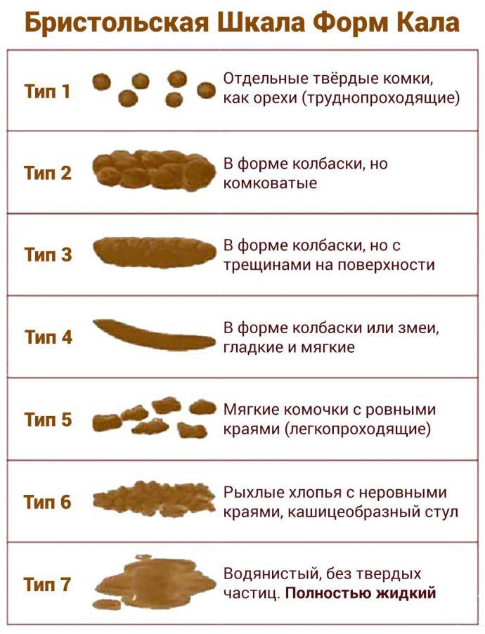 структура кала