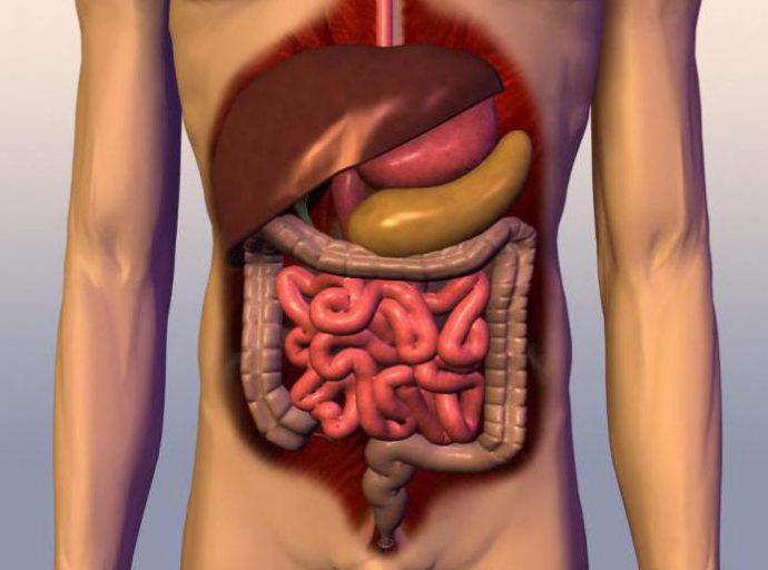 спазм тонкого кишечника