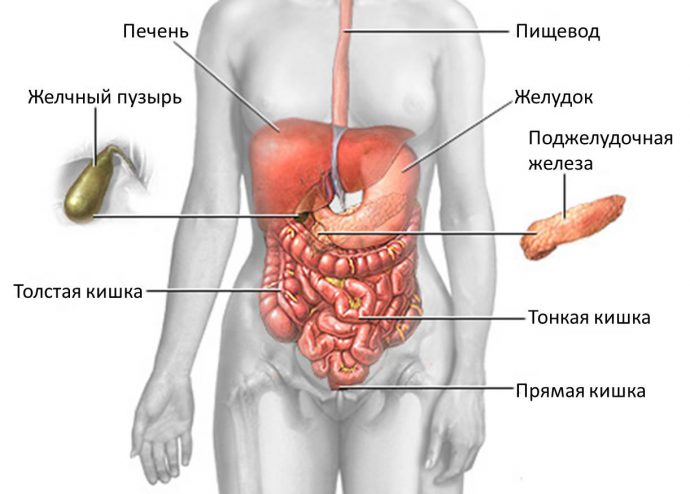 классификация холецистита