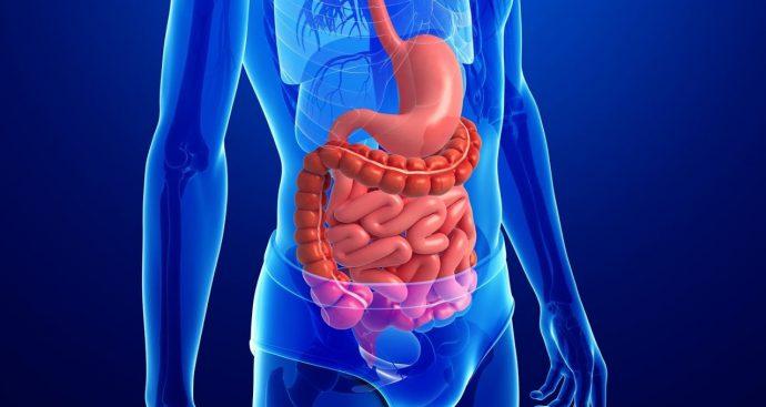 противовоспалительные средства для кишечника