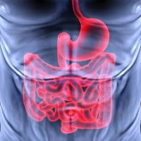 Фолликулярный бульбит желудка: причины, симптомы, лечение