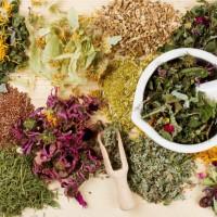 Народные средства и рецепты от боли в желудке