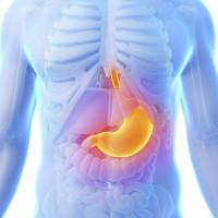 Атония желудка – патология, от которой никто не застрахован