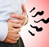 Почему желудок не переваривает пищу и что делать при этом