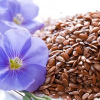 Семена льна при гастрите – польза и рецепты
