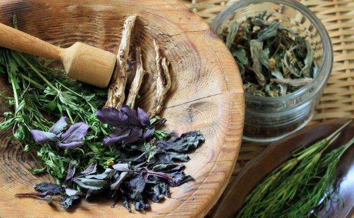 Какие травы при гастрите желудка можно использовать в лечебных и профилактических целях