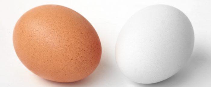 Яйца детям