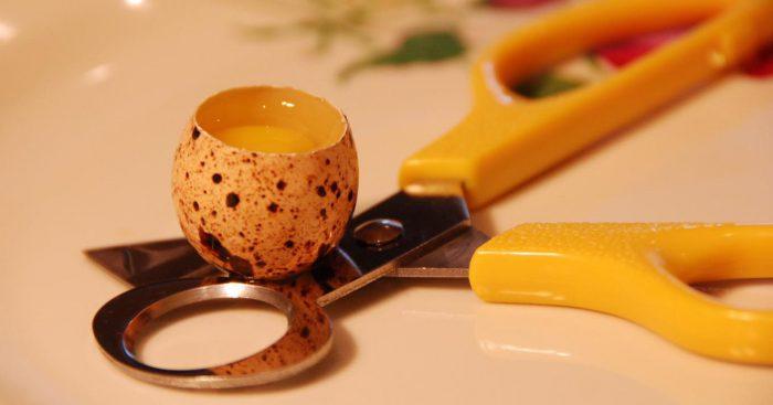 Употребление перепелиных яиц