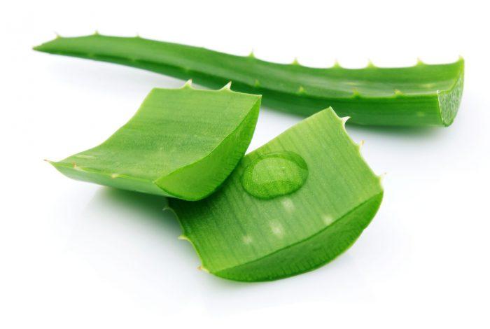 Употребление листьев растения
