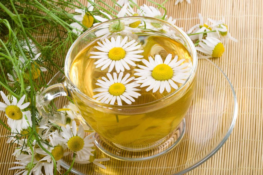 Лекарственные травы при болях в желудке