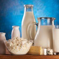 Почему у взрослых от молока начинается понос