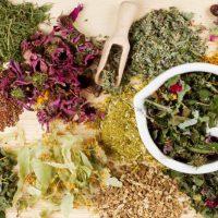 Травы при лечении язвы желудка