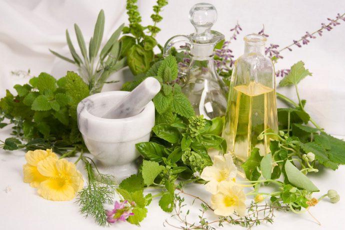 какими травами лечить язву желудка