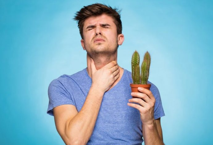 Может ли болеть горло из за язвы желудка thumbnail