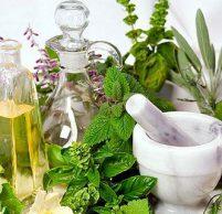 Самые эффективные лечебные травы для желудка и кишечника
