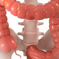 Причины и симптомы опущения желудка