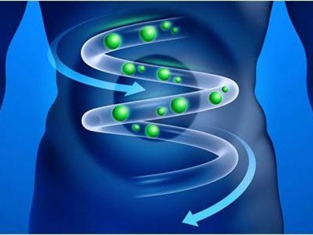 газы в кишечнике