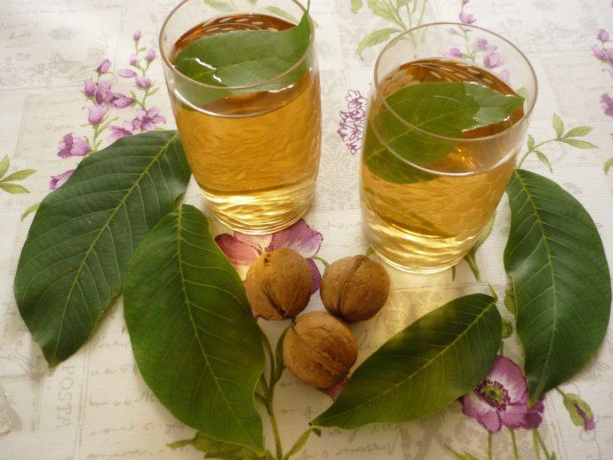 чай из листьев ореха