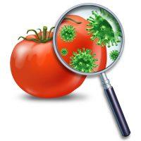 Кишечная инфекция: причины появления, симптомы и лечение