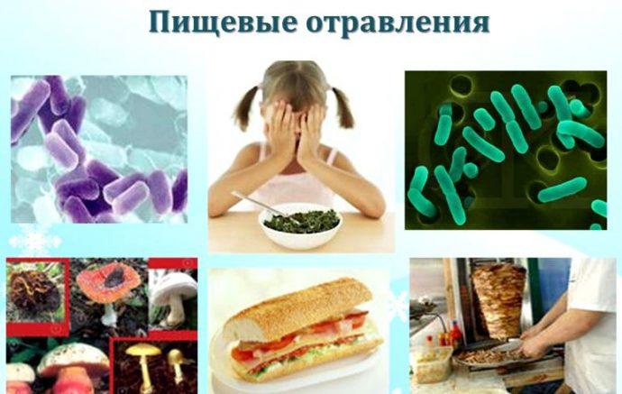 болезнетворные микроорганизмы в продуктах