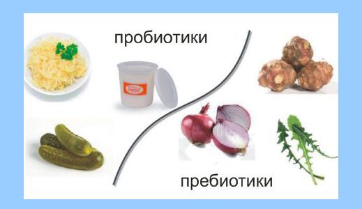 пробиотики и пребиотики