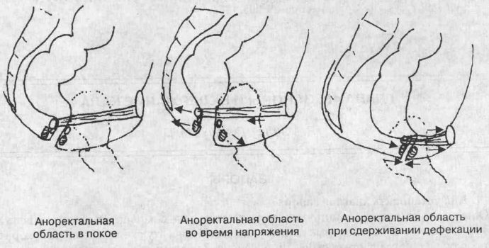 состояние аноректальной области