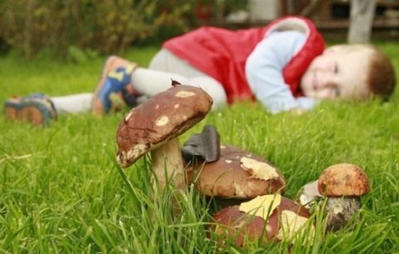 отравление детей грибами