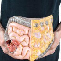 Симптомы и лечение спазма тонкого кишечника